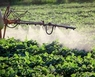 pesticides.jpg__196x130_q100_crop_upscale.jpg